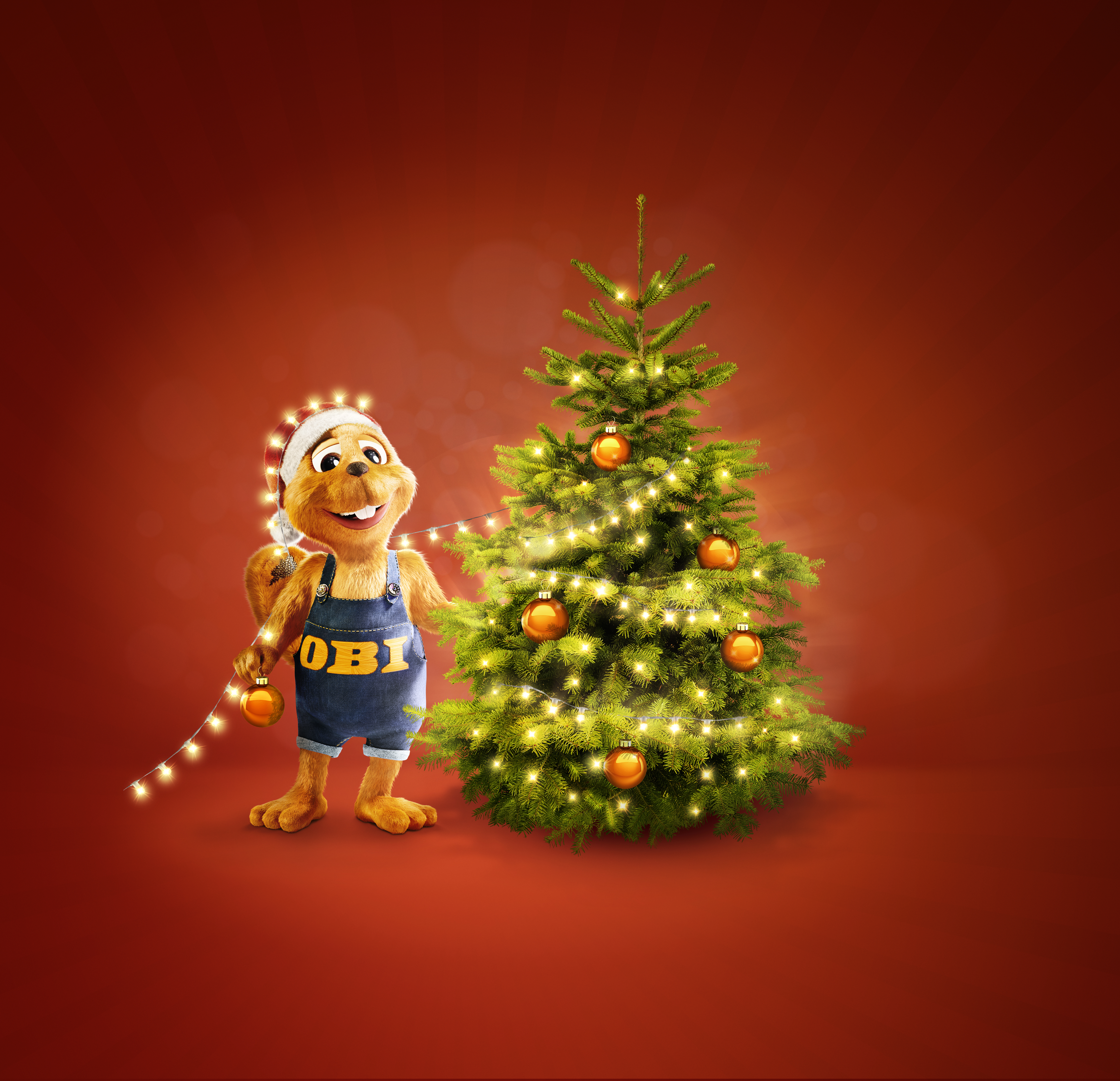 Obi Weihnachtsbaum.Ho Ho Hol Dir Deinen Baum Der Volks Weihnachtsbaum Von Obi Media