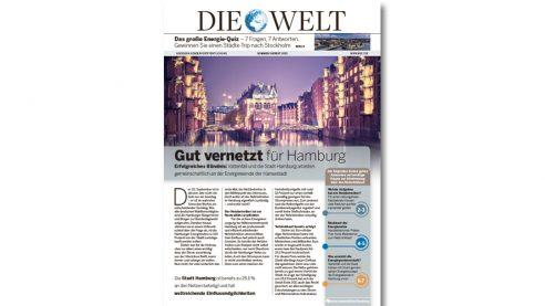 Mini Zeitung – Case Vattenfall, DIE WELT Hamburg