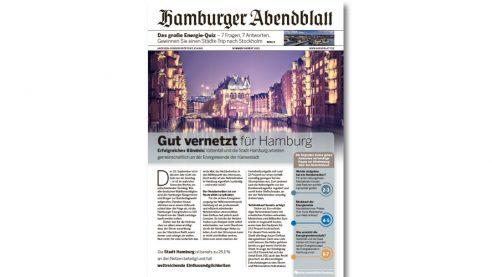 Mini Zeitung – Case Vattenfall, Hamburger Abendblatt